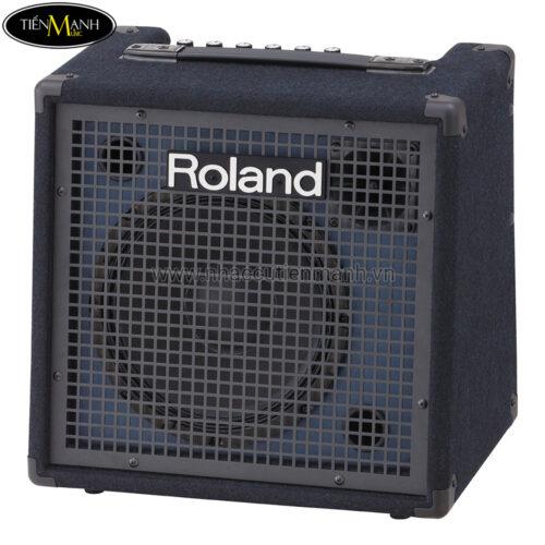 Roland KC-80 Ampli Trống Đa Năng dành cho các Nhạc Cụ
