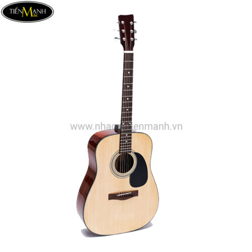 Đàn Guitar Acoustic D-100