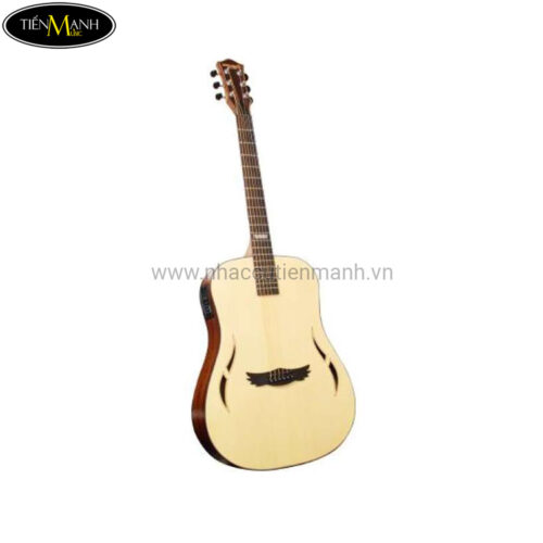 Đàn Guitar Acoustic Dream Maker DM-100 + (Bao)