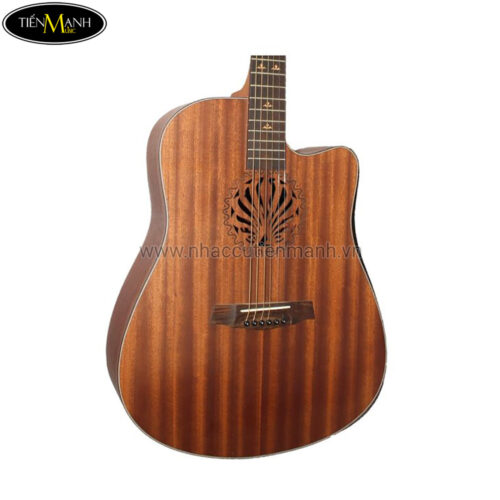 Đàn Guitar Acoustic Dream Maker DM-308 + (Bao)