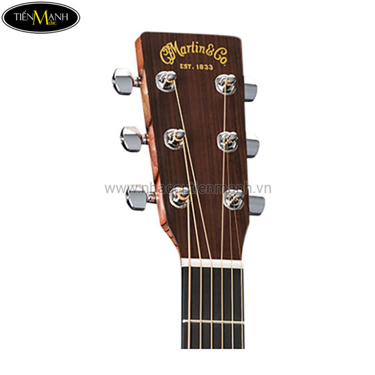 Đàn Guitar Acoustic Martin GPX1AE