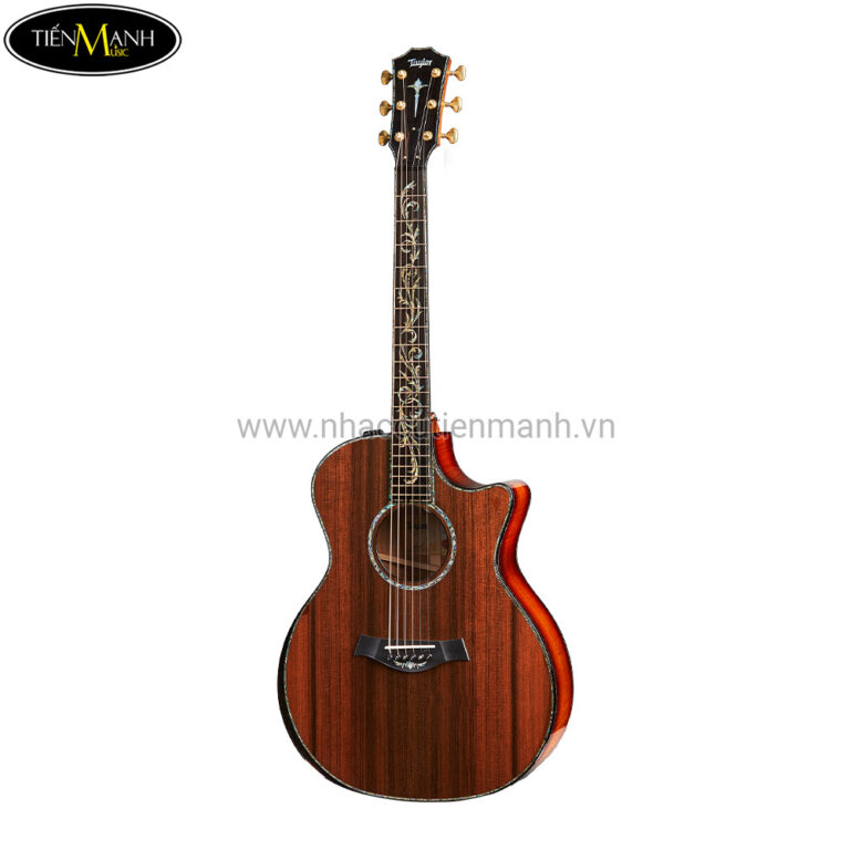 Đàn Guitar Acoustic PS14ce BSR