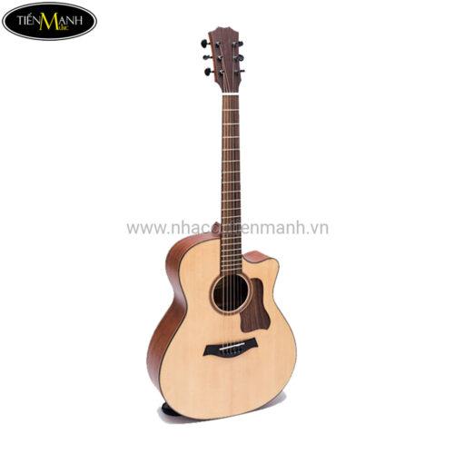 Đàn Guitar Acoustic Taylor 350-T350
