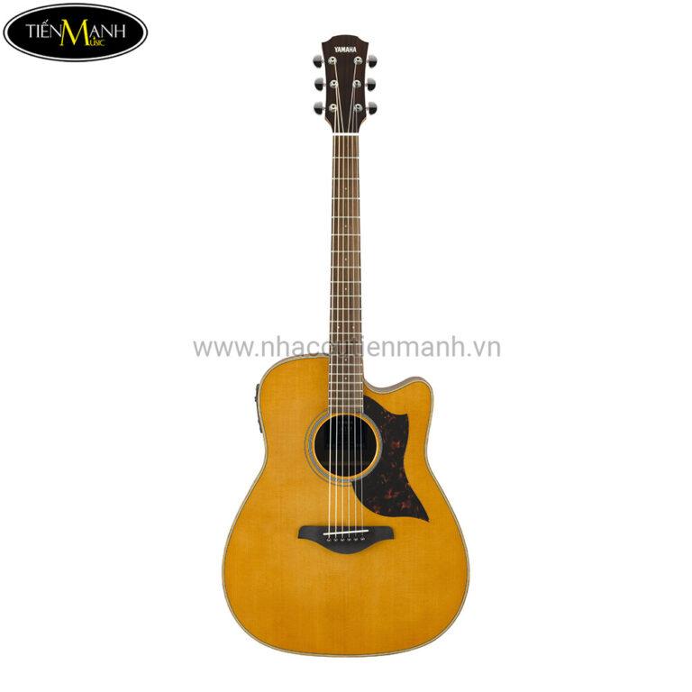 Đàn Guitar Acoustic Yamaha A1M