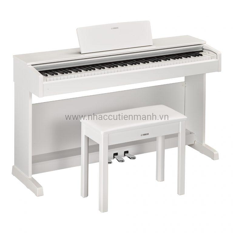 Đàn Piano Điện Yamaha YDP-143 (Sản phẩm mới YDP144)