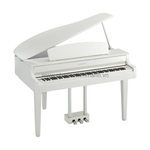 Đàn Piano Điện Yamaha CLP-665GP