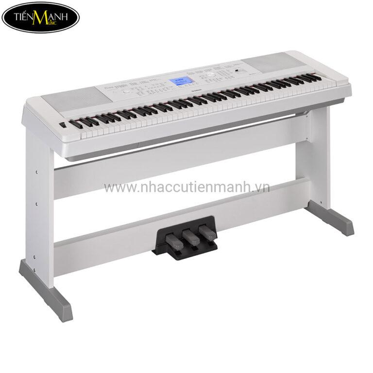 Đàn Piano Điện Yamaha DGX-660 + LP-7A