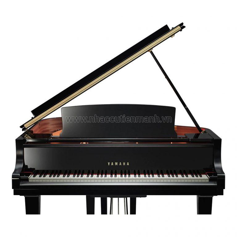 Đàn Piano Grand Yamaha C1X PE