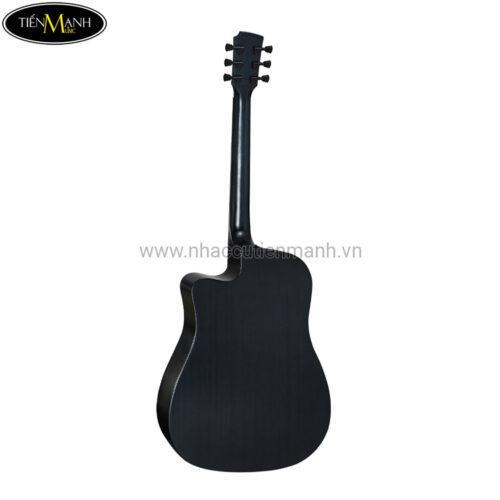 Đàn Guitar Acoustic Diana 729 DN-DI