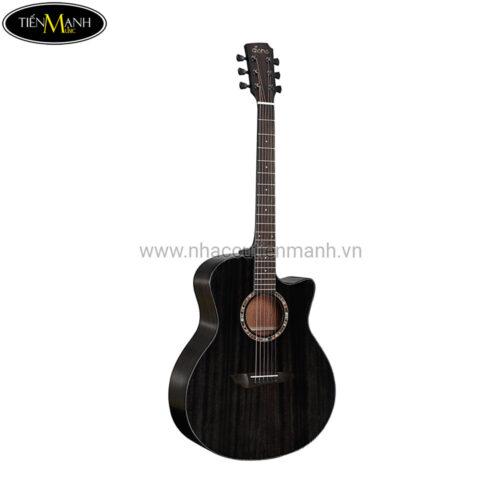 Đàn Guitar Acoustic Diana 729 DN-AB