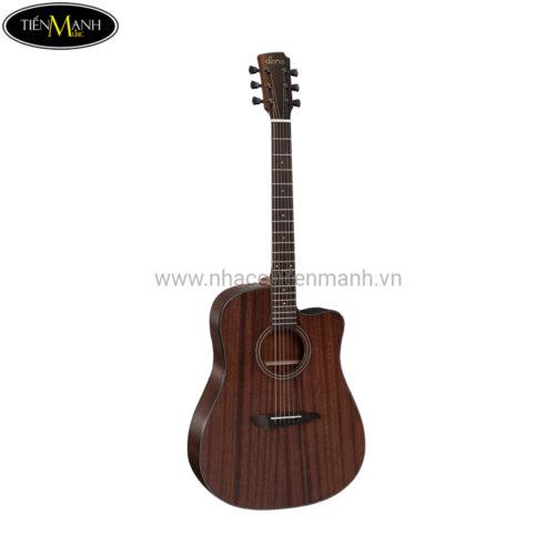 Đàn Guitar Acoustic Diana 729 DN-DT