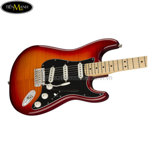 Đàn Guitar Điện Fender Player Strat PLS TOP MN ACB