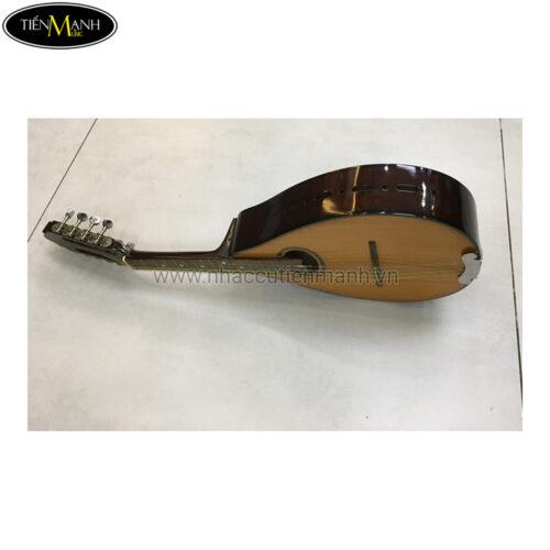 Đàn Mandolin Việt Nam TM-DMT9