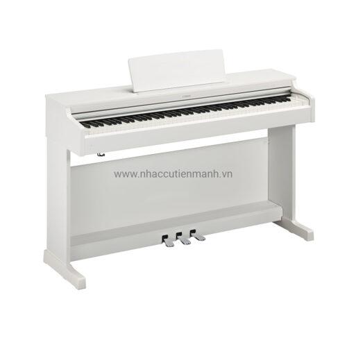 Đàn Piano Điện Yamaha YDP-164WH