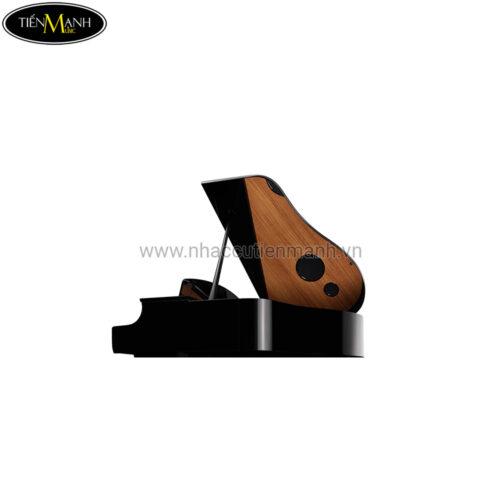 Đàn Piano Điện Yamaha CLP-695GP