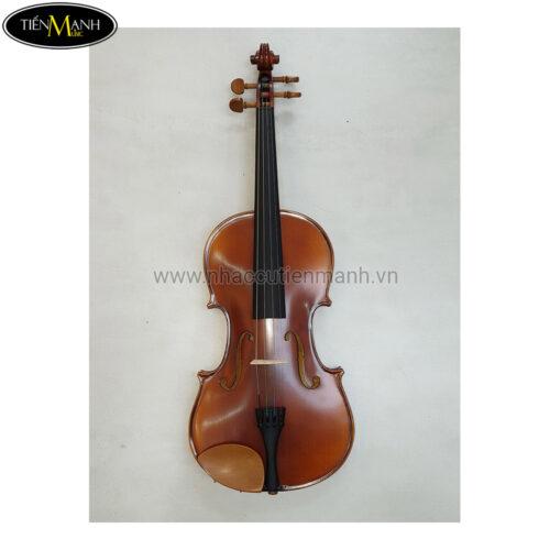 Đàn Viola Scott & Guan 140