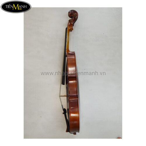 Đàn Viola Scott Guan 140