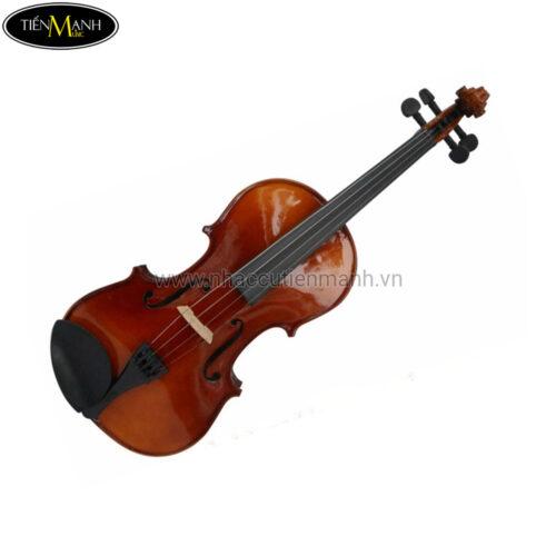 Đàn Violin Omebo Size 4/4 Model RV-205