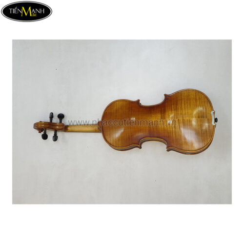 Đàn Violin Scott Cao STV-017CE