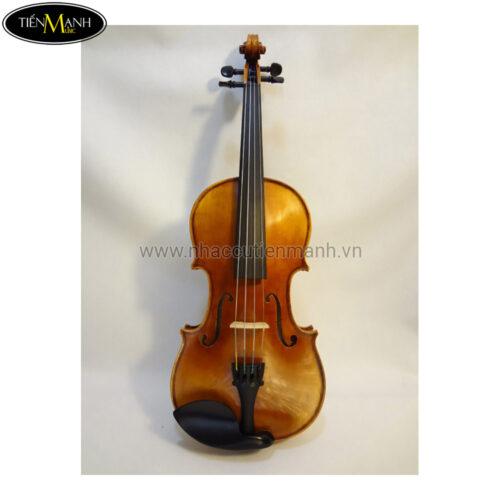 Đàn Violin Scott Cao STV-017E