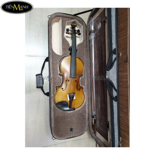 Đàn Violin Vân Thật Amati 1969  (1/4 1/2 3/4 4/4)