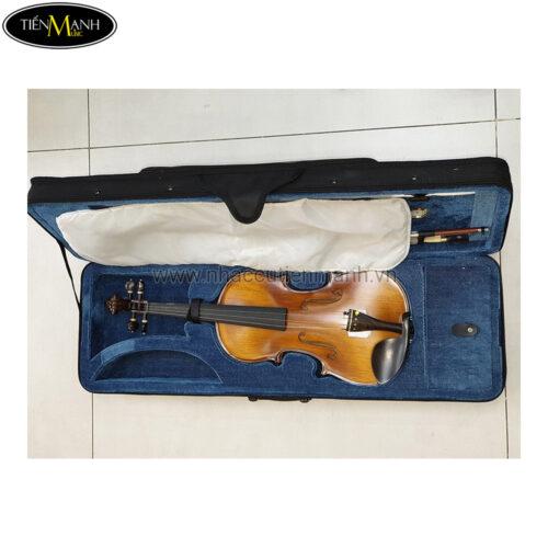Đàn Violin Vân Vẽ Amati VM118 (1/4 1/2 3/4 4/4)
