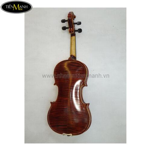 Đàn Violin Vân Vẽ Carlo Giordan  size 4/4