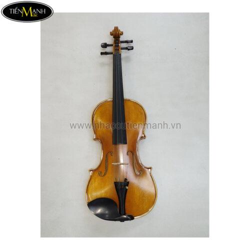 Đàn violin vân vẽ Giovani size 4/4