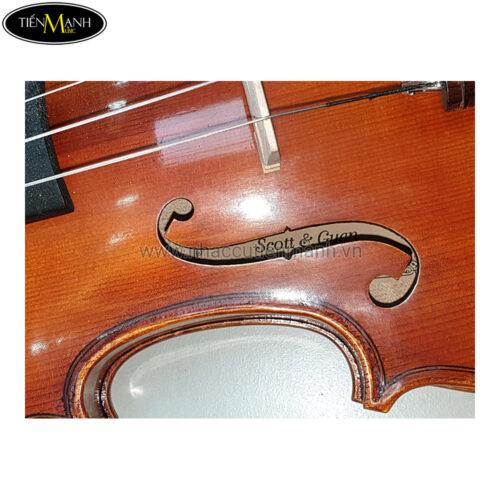 Đàn Violin Vân Vẽ Strad Classic Size 3/4