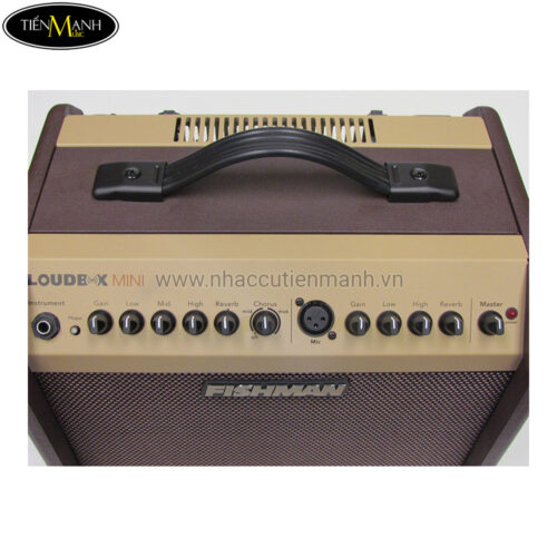Amplifier Fishman Loudbox Mini 60W Bluetooth