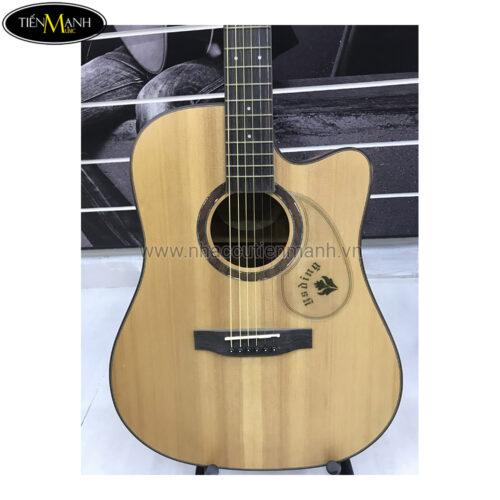 Đàn Guitar Acoustic YSD-410 EQ