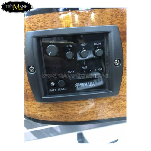 Đàn Guitar Acoustic Yamaha FGX800C