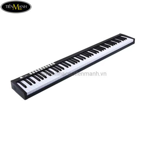 Đàn Piano Điện Bora BX-01 (88 Phím Nặng Cảm Ứng Lực) - Midi Keyboard Controllers BX-I