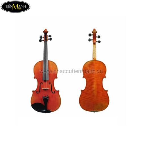 Đàn Violin Scott & Guan Violin STV013