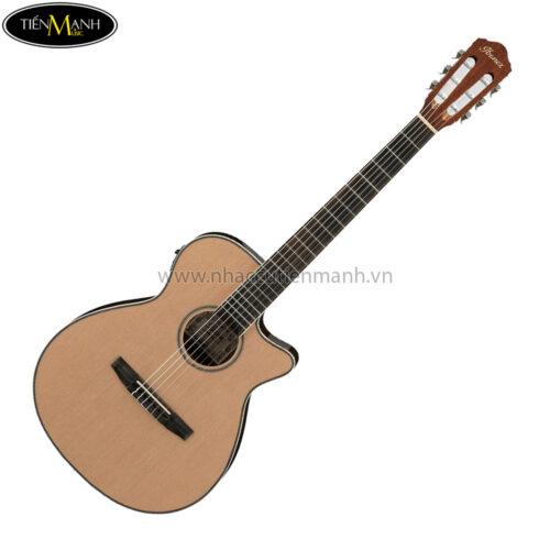 Đàn Guitar Acoustic Ibanez AEG8TNE-NT (EQ)