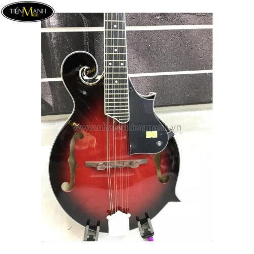 Đàn Mandolin Trung Quốc W77 (không có EQ)