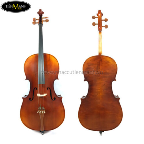 Đàn Cello Scott 601 size 4/4CL60144