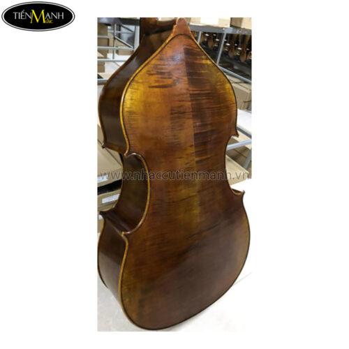 Đàn Double Bass Amati D700SFL Contrabass