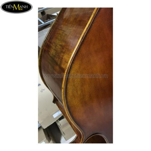 Đàn Double Bass Amati D850SFL Contrabass