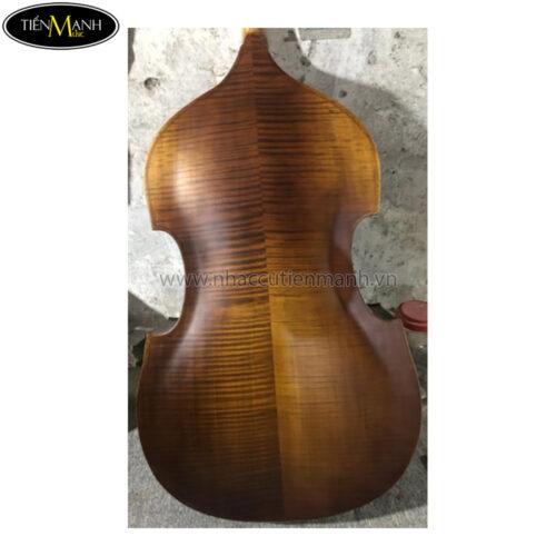 Đàn Double Bass Amati DBF101 Contrabass