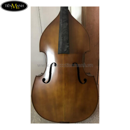 Đàn Double Bass Amati DW102 Contrabass