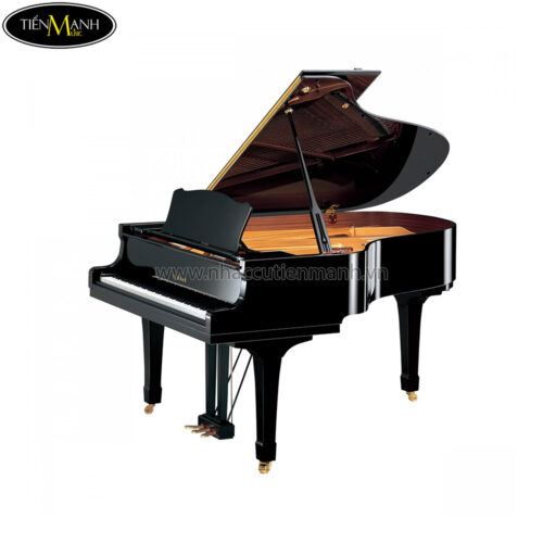Đàn Piano Grand Yamaha C3 PE