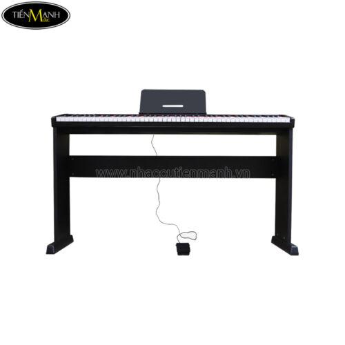 Đàn Piano Điện Maxwell