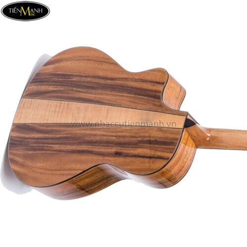 Đàn Guitar Acoustic Ba Đờn T600