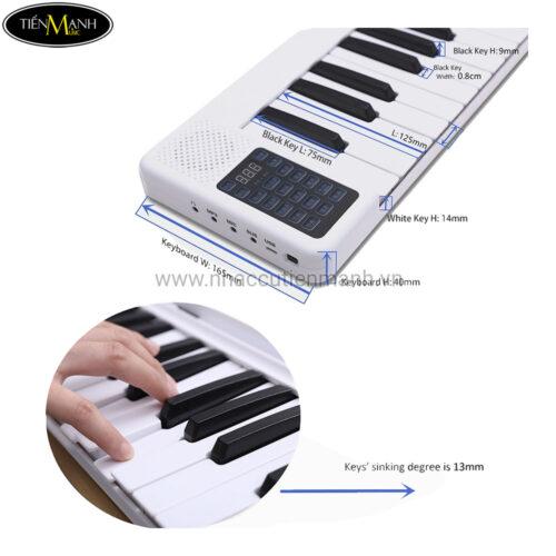Đàn Piano Điện Bora BR-01 Gấp Gọn