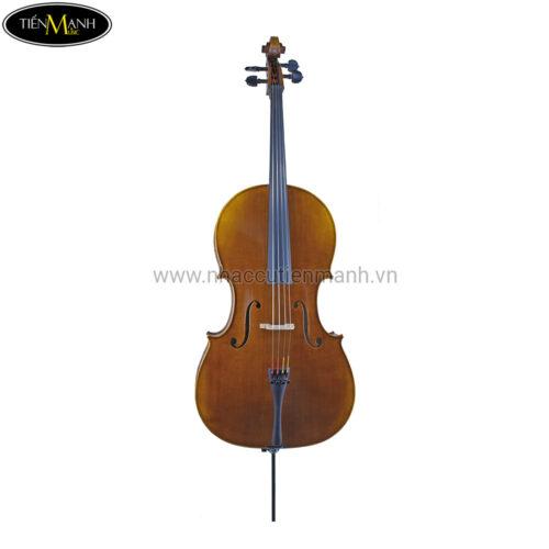 Đàn Cello Scott Cao STC-600
